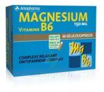 Arkovital Magnésium Vitamine B6 Gélules B/120 à TOULOUSE