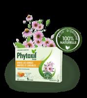 Phytoxil Pastilles Gorge Pastilles Adulte Enfant +12 Ans B/20 à TOULOUSE