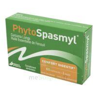 Phytospasmyl Caps B/60 à TOULOUSE