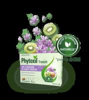 PHYTOXIL TRANSIT Comprimés B/20 à TOULOUSE