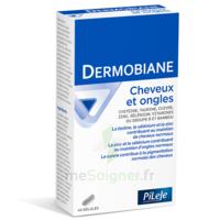 Pileje Dermobiane Cheveux & Ongles 40 Gélules à TOULOUSE