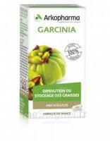 Arkogélules Garcinia Gélules Fl/45 à TOULOUSE