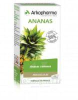 Arkogélules Ananas Gélules Fl/150 à TOULOUSE