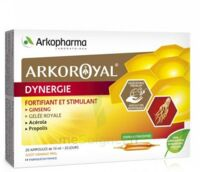 Arkoroyal Dynergie Ginseng Gelée Royale Propolis Solution Buvable 20 Ampoules/10ml à TOULOUSE
