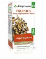 Arkogélules Propolis Bio Gélules Fl/45 à TOULOUSE