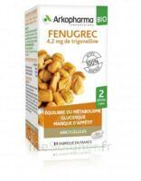 Arkogélules Fenugrec Bio Gélules Fl/40 à TOULOUSE