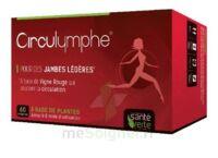 Santé Verte Circulymphe Triple Actions B/30 à TOULOUSE