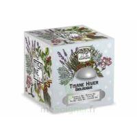 Tisane Be Cube Hiver Bio à TOULOUSE