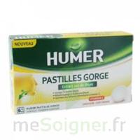 HUMER PASTILLE GORGE à l'etrait sec de thym 24 pastilles à TOULOUSE