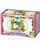 Romon Nature Tisane défenses hivernales Bio à TOULOUSE