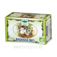 Romon Nature Tisane Badiane Bio à TOULOUSE