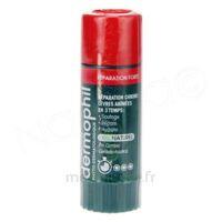 Dermophil Indien Réparation Forte Lèvres 4 g à TOULOUSE