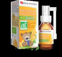 Forte Pharma Propolis bio Spray junior 15ml à TOULOUSE