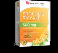 Forte Pharma Propolis 500 Solution buvable 20 Ampoules/10ml à TOULOUSE