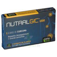 Nutralgic Comprimés inflammations B/10 à TOULOUSE