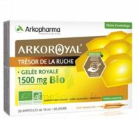 Arkoroyal Gelée Royale Bio 1500 Mg Solution Buvable 20 Ampoules/10ml à TOULOUSE