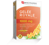 Forte Pharma Gelée Royale 1000 Mg Solution Buvable 20 Ampoules/10ml à TOULOUSE