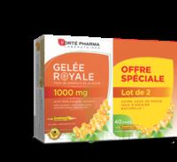 Forte Pharma Gelée royale 1000 mg Solution buvable 2*B/20 Ampoules/10ml à TOULOUSE