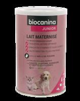 Biocanina Lait poudre maternisé B/400g à TOULOUSE