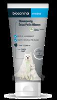 Biocanina Shampooing éclat poils blancs 200ml à TOULOUSE