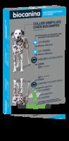 Biocanipro Collier chien B/1 à TOULOUSE
