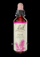 Fleurs De Bach® Original Pine - 20 Ml à TOULOUSE