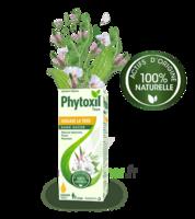 Phytoxil Toux Sans Sucre Sirop Adulte Enfant +2 Ans Fl/120ml à TOULOUSE