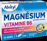 Govital Magnésium Vitamine B6 Comprimés B/45 à TOULOUSE
