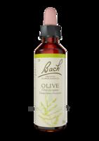 Fleurs De Bach® Original Olive - 20 Ml à TOULOUSE