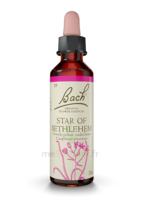 Fleurs De Bach® Original Star Of Bethlehem - 20 Ml à TOULOUSE