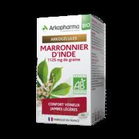 Arkogélules Marronnier D'inde Bio Gélules Fl/45 à TOULOUSE