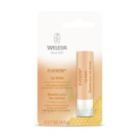 Weleda Soin des Lèvres Everon® 4,8ml à TOULOUSE