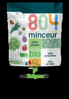 804® Minceur Soupe Silhouette Bio Sachet/180g à TOULOUSE