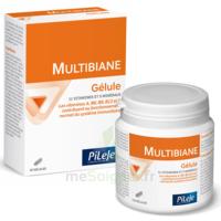 Pileje Multibiane 120 Gélules à TOULOUSE